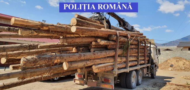 ACȚIUNI ALE POLITIEI PENTRU PROTEJAREA FONDULUI FORESTIER