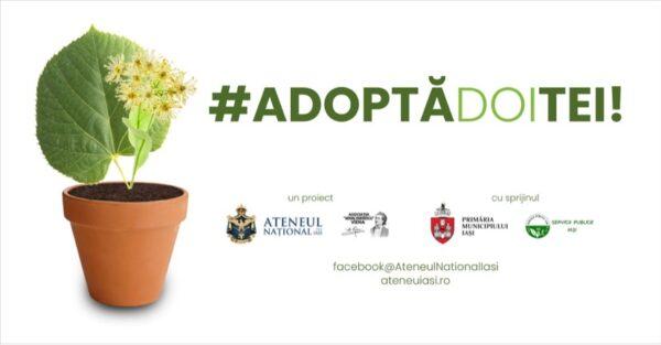 """Proiectul """"Adoptă un Tei"""" a prins viață datorita Ateneului Național din capitala Moldovei, și a Asociației """"Mihai Eminescu"""" – Viena"""