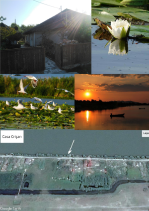 Anunt imobiliar: Acasă, în Delta Dunării!