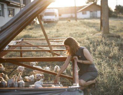 Training-uri, mentorat și finanțare pentru 10 antreprenoare din industria agroalimentară în cadrul programului Empowering Women in Agrifood 2021